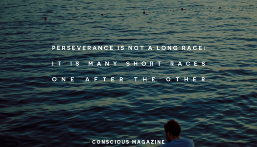 Perseverance is not a long race; it is many short races one after the other