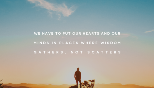 We have to put our hearts and our minds in places where wisdom gathers, not scatters.