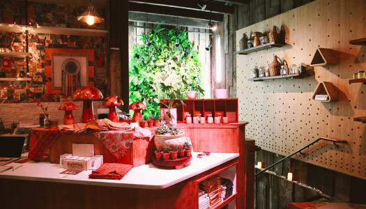 Alchemist Kitchen: Connect With The Power Of Plants [New York City]