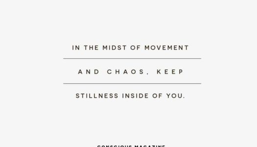 In the midst of movement and chaos, keep stillness inside of you.